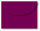 40003 Boysenberry envelope pack