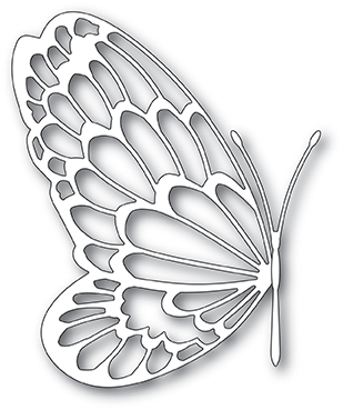 Big Wing Butterfly