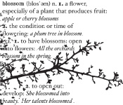 CS2213J Blossom Branch cling stamp
