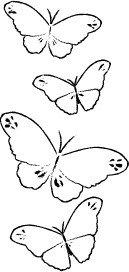 E2044 Butterfly Trail wood mounted stamp